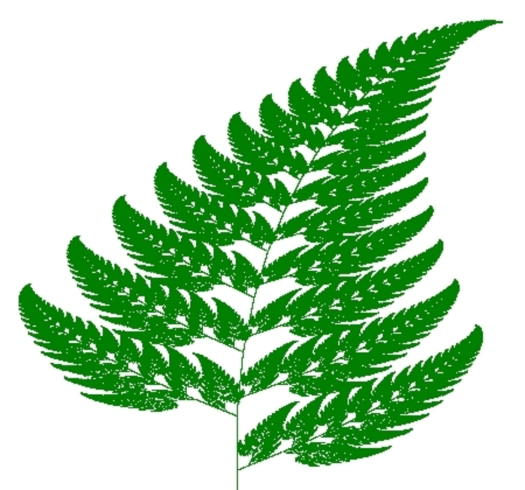 The Barnsley Fern. No, it's not a real fern – it's a mathematical image generated by playing the Chaos Game with four particular maps. Using fractal geometry, complex natural shapes can be encoded with simple mathematical rules.(Michael Rose)